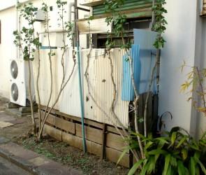 Privacy in Corrugated Plastic Scraps