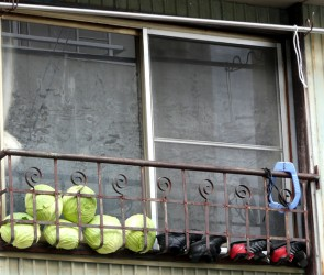 Storing Cabbages and Drying Shoes